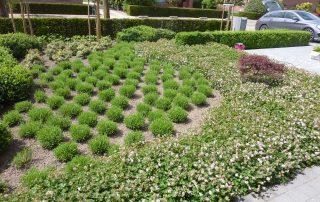 vvklinkers vv klinkers aanleg oprit terras tuin